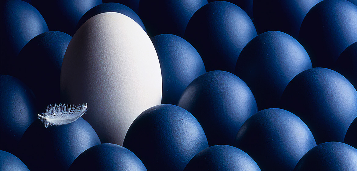 Japics Photography, Blue, Eggs, Hampshire, Portsmouth, Waterlooville,